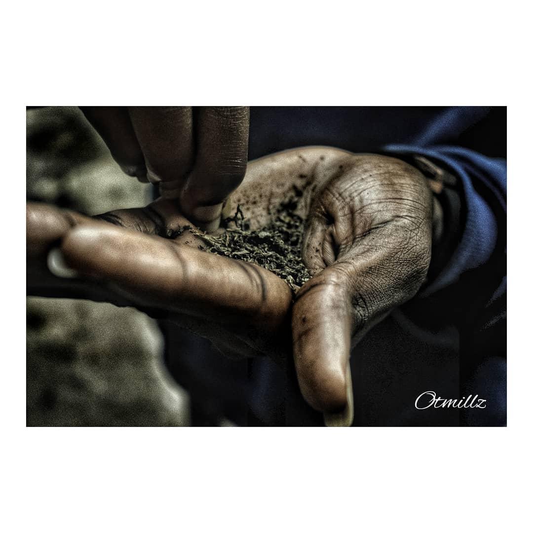 Drug Abuse by Otmillz